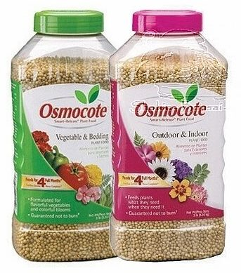 Osmocote Outdoor and Indoor