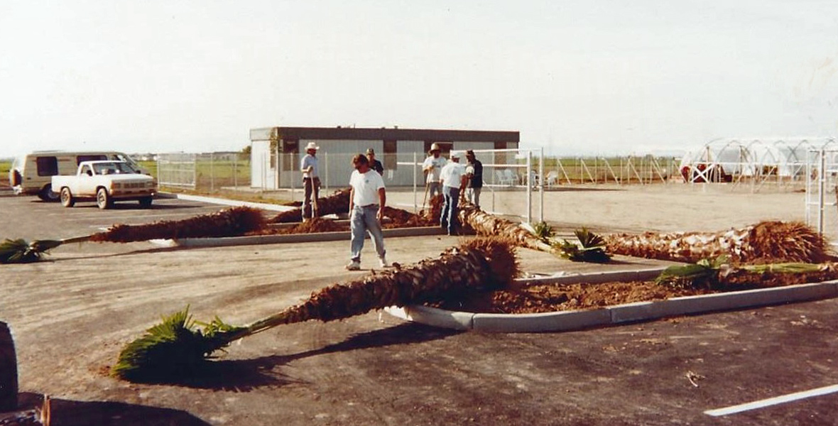 Elgin Nursery and Tree Farm has been serving the Phoenix area since 1986