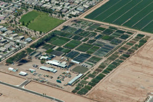 Aerial view of Elgin Tree Farm