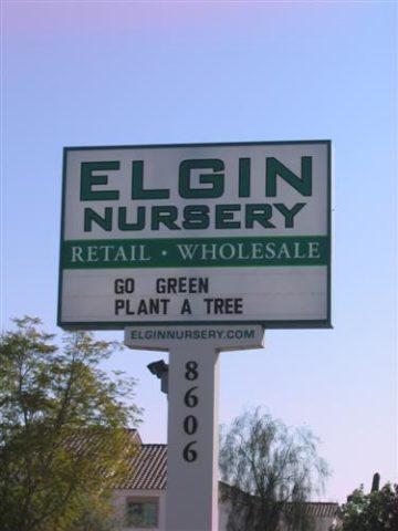 Elgin Nursery and Tree Farm