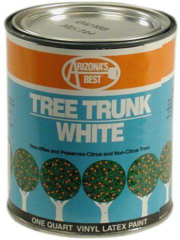 Arizona's Best White Tree Trunk Pain