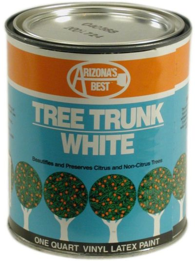 White Tree Trunk Paint